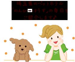 埼玉県のペットホテル「のんびーはうす」の毎日をご紹介します