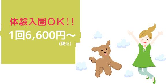 体験入店OK!!1回6,000円~