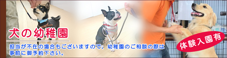 犬の幼稚園・体験入園有