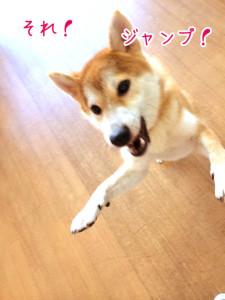 じゃんぷ!
