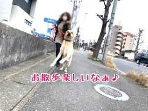 IMG_9787