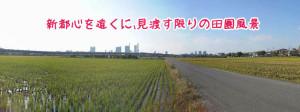 見沼田んぼと埼玉新都心